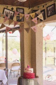 Sock Monkey Themed First Birthday by Christina Z Photography - Bradenton, FL